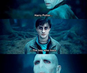 funny, pie, and harry potter image