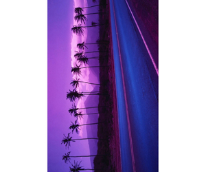 palm trees, purple, and wallpaper image