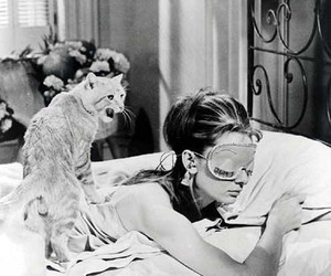audrey hepburn, black and white, and cat image