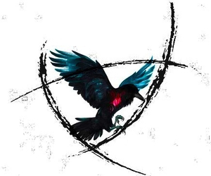 maggie stiefvater, the raven boys, and the raven cycle image