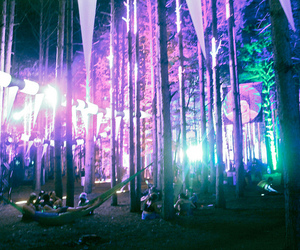 forest, party, and lights image