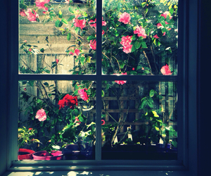 country, flowers, and garden image