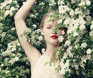 flowers, photography, and white image
