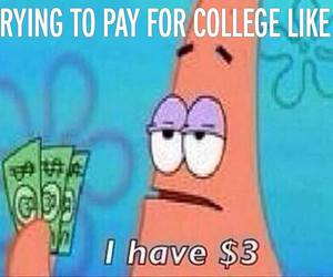 college, funny, and life image