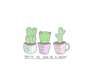 cactus, cute, and tumblr image