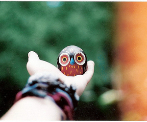 owl, hand, and photography image