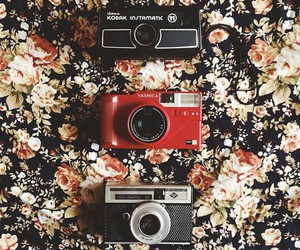 camera, flowers, and old image