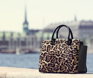 cheetah, purse, and fashion image