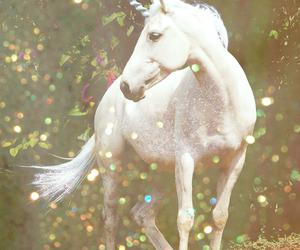 unicorn, magic, and white image