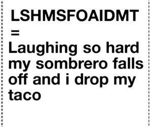 funny, taco, and lol image
