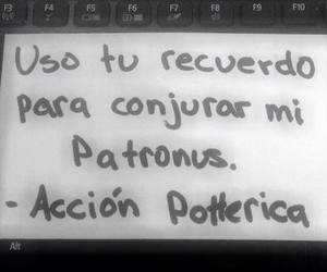 love, harry potter, and frases image