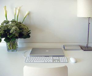 apple, white, and flowers image