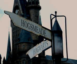 harry potter, hogs, and hogwarts image