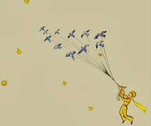 birds, lovely, and the little prince image