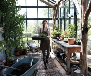 food, greenhouse, and herbs image