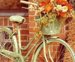 bike, pretty, and vintage image