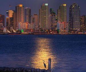 city, night, and moon image