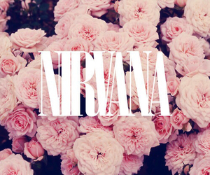 nirvana, flowers, and rose image