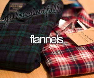 flannels, autumn, and fall image