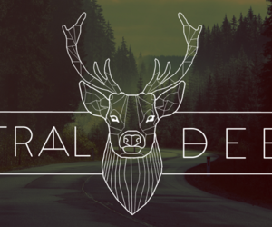 deer, forest, and geometric image