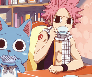 fairy tail, happy, and natsu image