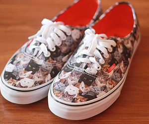 cat, vans, and shoes image