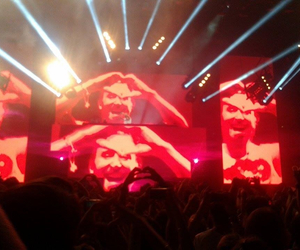 amazing, concert, and david guetta image