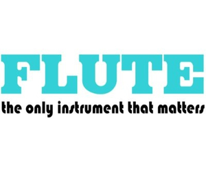 band, flute, and marching band image