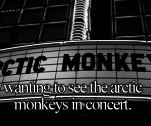 concert, arctic monkeys, and music image
