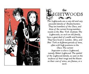 lightwood image