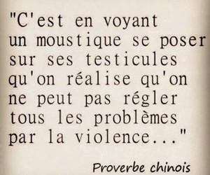 french and proverbe image