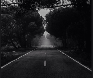 road, dark, and nature image