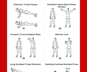 arms, fit, and workout image