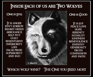 battle, choice, and wolves image