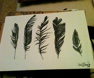 design, feather, and sketch image