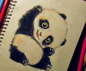panda, cute, and drawing image