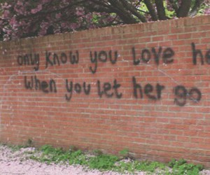 love, quote, and passenger image
