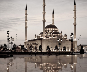 amazing, beautiful, and arabic image