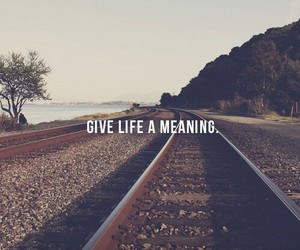 life, live, and meaning image