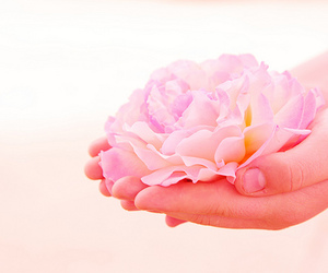 flower, hands, and images image