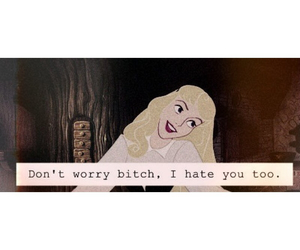 bitch, hate, and disney image