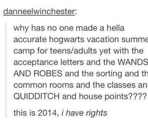 harry potter, Houses, and quidditch image