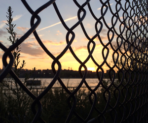 sunset, fence, and pretty image