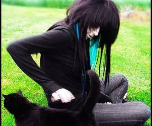 cat, emo, and scene image