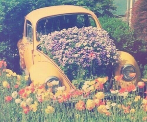 enchanted, garden, and vw image