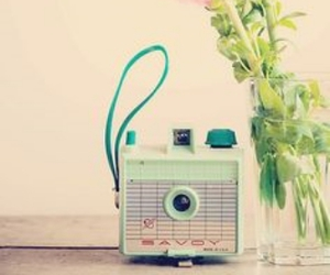 camera, floral, and flowers image