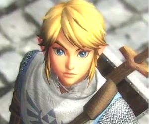 link and hyrule warriors image
