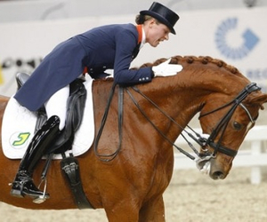 beautiful, perfect, and dressage image