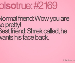 friends, funny, and shrek image