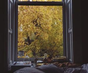 comfy, cozy, and season image